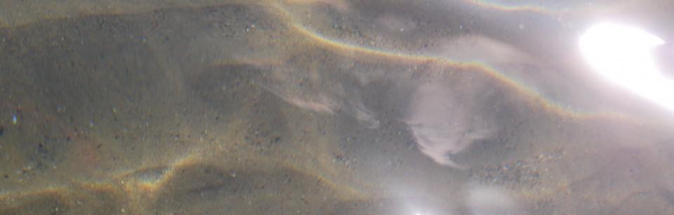 BARATTI SETT 2010 092